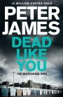 Dead Like You: A Roy Grace Novel 6